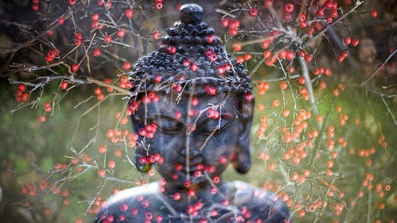 Le pouvoir des mantras