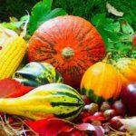 légumes fruits saison