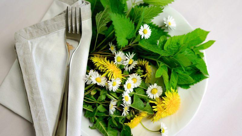 Phytothérapie : se soigner grâce aux plantes