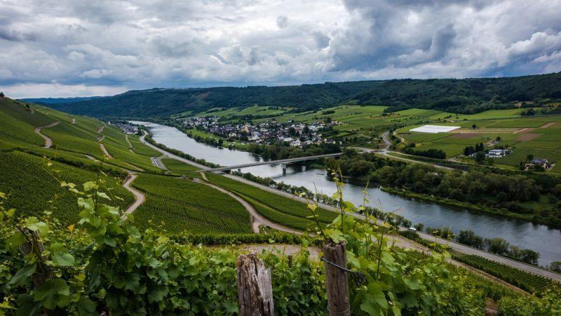 La Moselle et ses spécialités