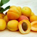 huile noyau abricot