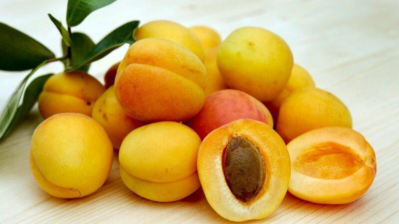 Les vertus de l'huile de noyau d'abricot